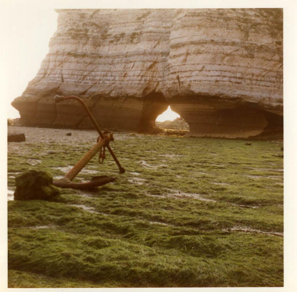 curiosité des falaises