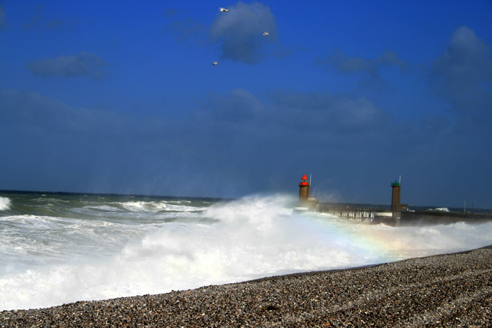 tempête mars 2008