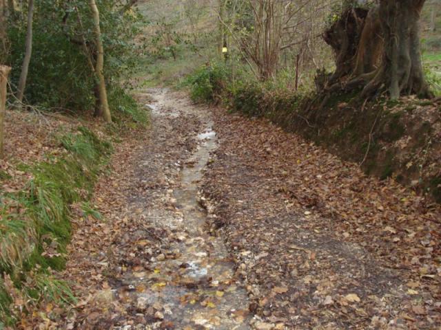 Chemin de la Rouge au Val aux Clercs après la pluie
