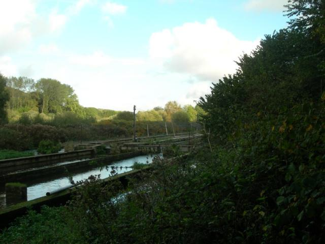 pisciculture de l'Epinay