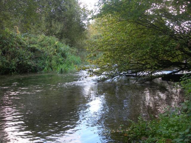La Valmont (rivière) près de la pisciculture