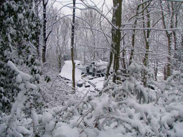 apres le feu la neige