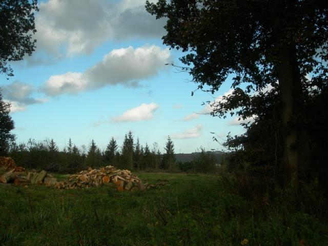 Vue sur la vallée de Valmont du bois de l'Epinay