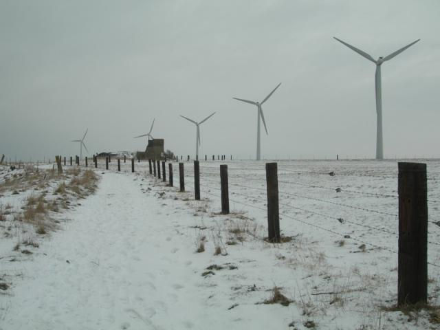 Eoliennes et neige