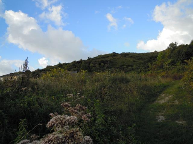 Chemin vers côte Saint Nicolas.jpg