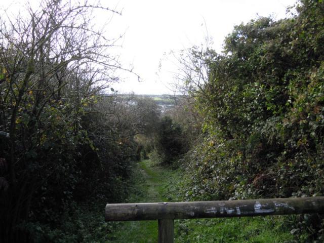 Chemin côte de la vierge