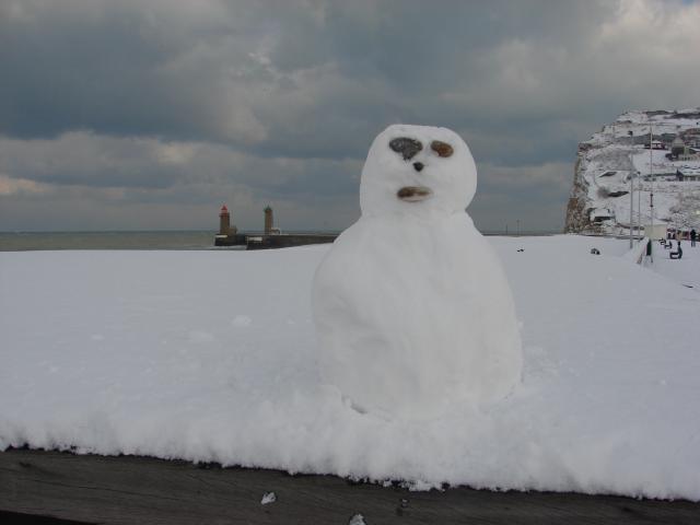 bonhomme de neige 2010