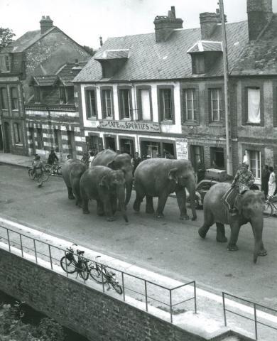 Parade du cirque Pinder rue Gustave Couturier