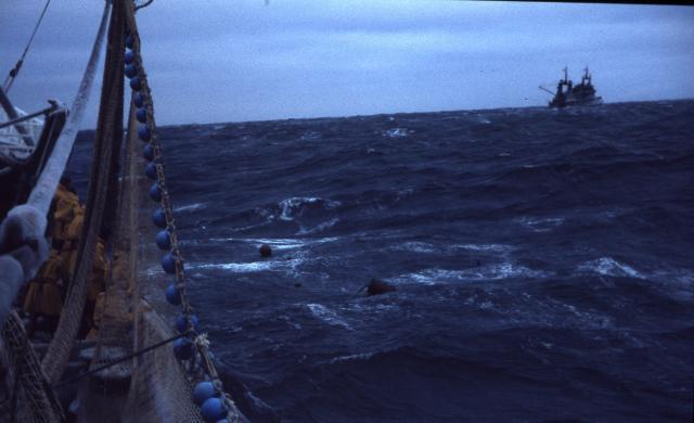 mouvement de boueee courrier avec le navire assistance