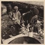 minerva avant guerre